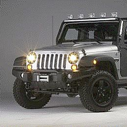Dr. Bob's Call To Duty Wrangler with Bi-Halogens